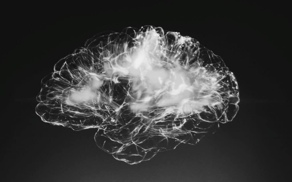 I benefici del CBD sul cervello