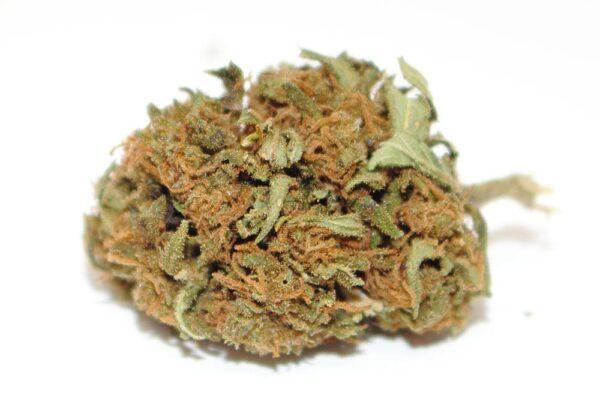 Cannabis light M5 haze