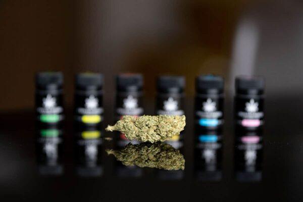Shop cannabis light